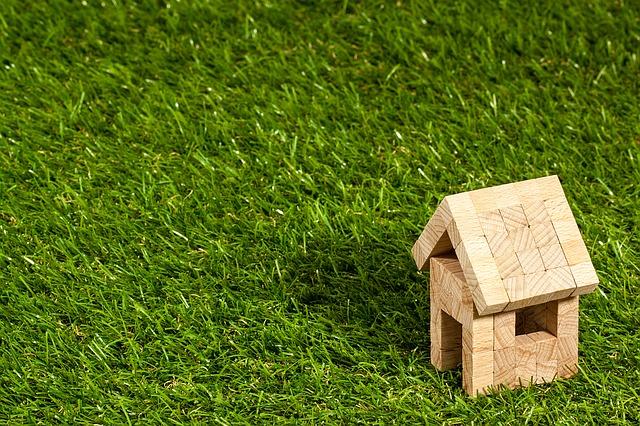 הגנת בית המגורים של חייב בפשיטת רגל